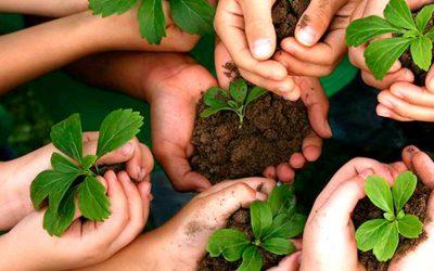 Padilha apresenta projeto que analisa em caráter de urgência atos do Presidente da República que impliquem retrocesso a preservação do meio ambiente